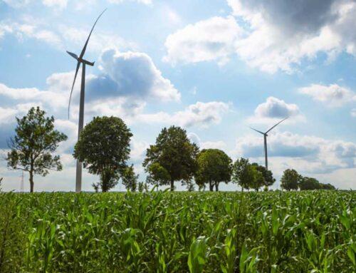 Rinnovabili in crescita nel 2019: +49%